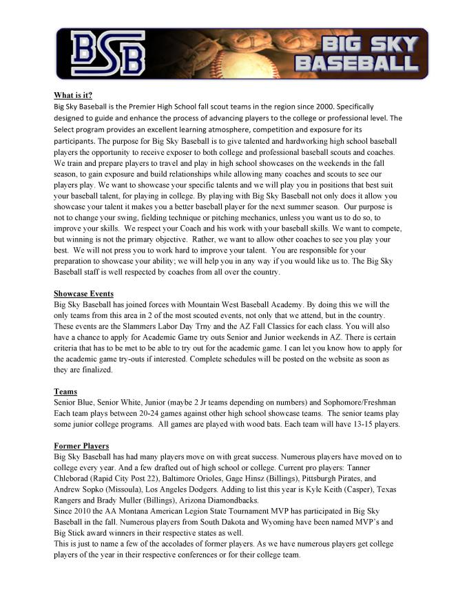 BSB PROFILE-2017-page-001